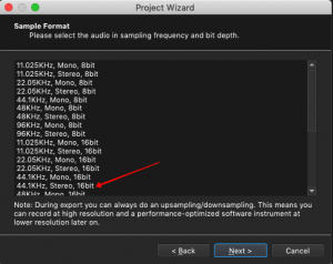 Project Wizard, Sample Format