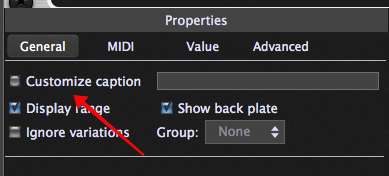 """Minor bug, Gig Performer 3.5, caption field could be edited even if the """"Customize caption"""" checkbox was not checked."""